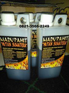 madu pahit  hutan sumatera